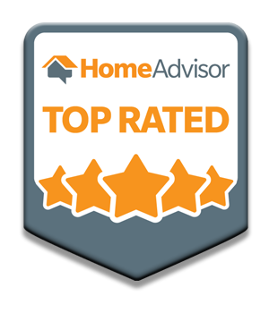 home advisor top rated home inspector