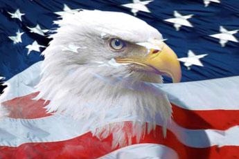 eagle_image